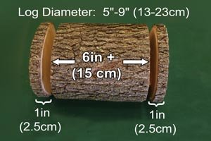 Ideal dimensions for handmade DIY log bird feeder.
